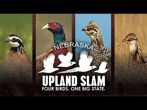 2019 Nebraska Upland Slam: Plan Your Slam