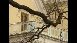 видео Дворец коттедж в Петергофе. Фото дворца коттедж