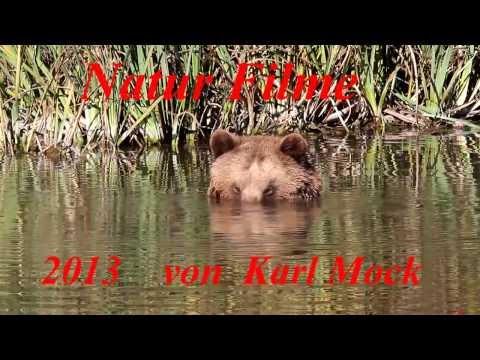Karl Mock   Naturfilme  2013 kurzfilm 1080 hd25