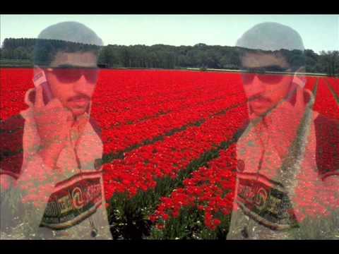 Roya Re - (Remix)Shiraz Uppal