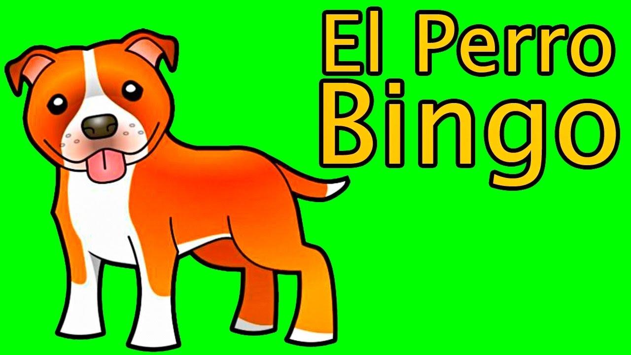 online, free bingo no deposit