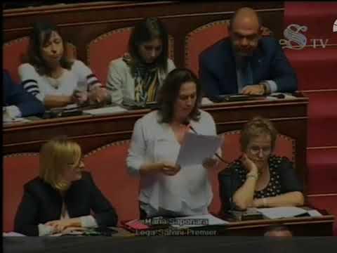 Intervento della senatrice Maria Gabriella Saponara