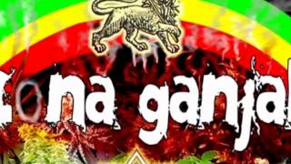 Zona Ganjah-Fumando Vamos A Casa Mix Vibra Positiva