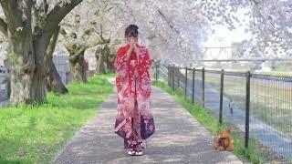 enjoy~ :D Happy New Year xD *information... Song : Haruurara momora...