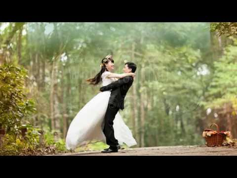 Wedding (Elegant Vidio)