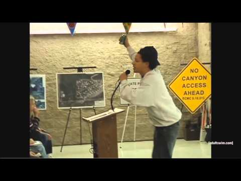 Eric Andre - City Council Meeting