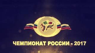 ЧР по корэш 2017  90 кг  Мусин Булат Татарстан — Зайнетдинов Айгиз ХМАО  Югра