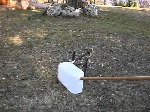 Bunny spears