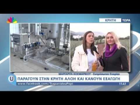 kritiGr.gr - Βιολογική καλλιέργεια αλόης στην Κρήτη