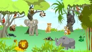 Dżungla: odgłosy zwierząt, dźwięki jakie wydają zwierzęta - nauka zabawa dla dzieci
