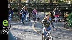 Electric Bike. The Bike Capital of America is Davis, CA and UC Davis is it's hub.