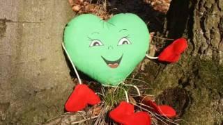 ☆ Srdce  - Radek Tomášek