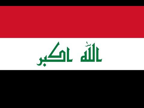 Kulbacki Pigeons In Iraq Nasze Golebie W Iraku We Shipping World