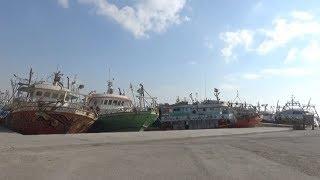 عودة مراكب الصيد بخليج السويس بعد توقف 10 أيام بسبب الطقس السيئ