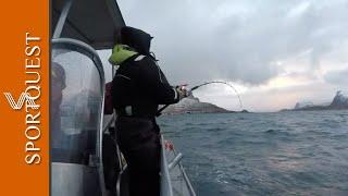 Sea Fishing Nappstraumen Norway