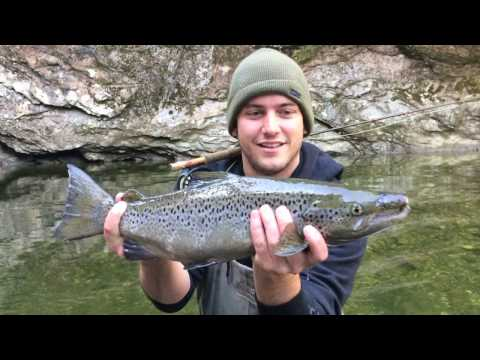 Outdoor Journal - Salmon In The Winooski
