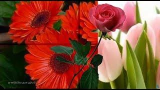 Прекрасная музыка для души ✿ Красивые цветы и цветочное настроение