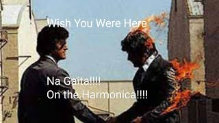 Wish You Were Here - Pink Floyd (na Gaita com Tablatura!)