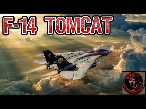 F-14 Tomcat - Naval Air Superiority Strike Fighter