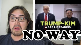 "Pothead Reacts 2 ""TRUMP-KIM SUMMIT"" — A Bad Lip Reading LIVE"