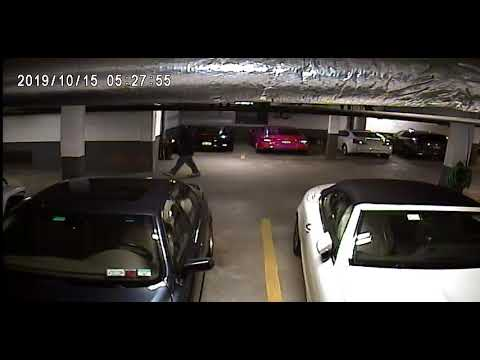 Video: Suspect Rummages Through Vehicles, Steals Credit Cards At Long Island Apartment Complex