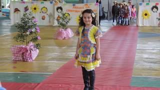 Baixar Desfile Julina Cristina Marcatto 2017