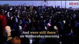 Tamil Nadu is erupting in protest against the ban on Jallikattu