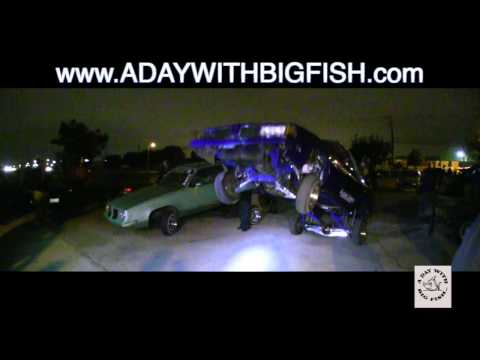 A Day With Big Fish Vol 74