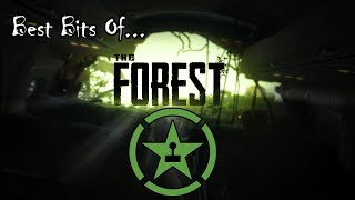 Best Bits of The Forest