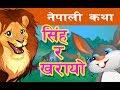 सिंह र खरायोको  कथा | The Lion  and The Rabbit in Nepali