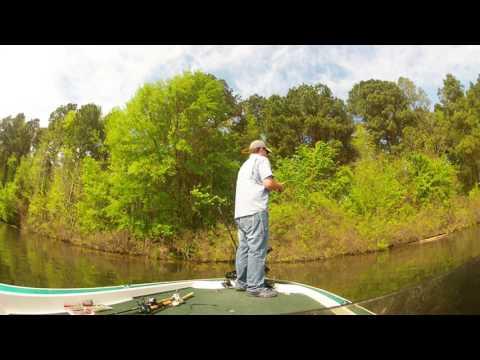 Lake Gilmer Bed Fishing