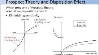 review of the disposition effect in