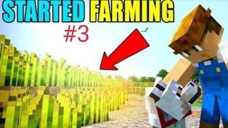 I start farming iฑ Minecraft part 3