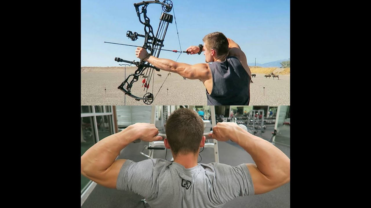 Increase Your Bow Draw Weight 3 Workouts To Help Youtube