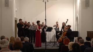 Á. Piazzolla:  Four Seasons of Buenos Aires, Otoño Porteño  (Markéta Janoušková)