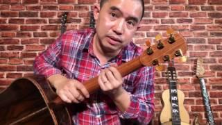 Giới thiệu Guitar Orion Ziricote