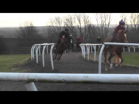 Two year old fillies turning for home
