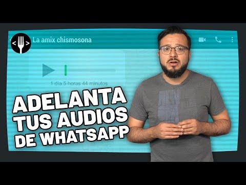 ¿Cómo acelerar tus audios de WhatsApp?