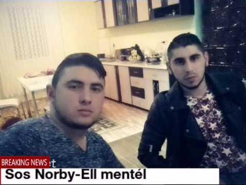 Sos Norby-Ell mentél. (TIHAMÉRNAK)