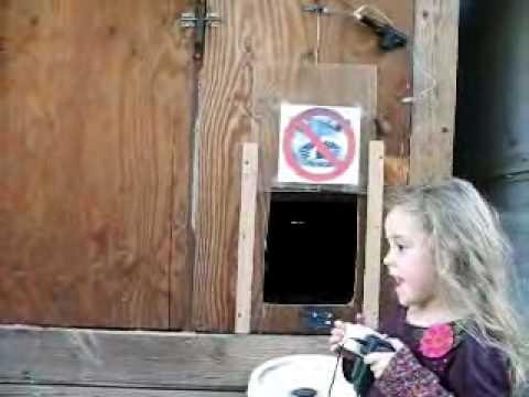 Automatic Chicken Coop Door 1.0