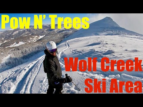 Pow N' Trees - Wolf Creek Ski Area (Known for the MOST Snow in Colorado)