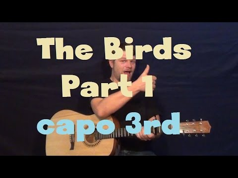 The Birds-Part 1 (The Weeknd) Easy Guitar Lesson Strum chords How to Play Tutorial