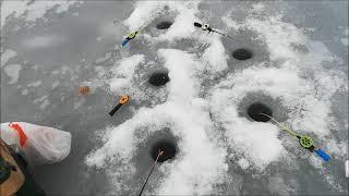 Рыбалка на Воронежском водохранилище 03 03 2021