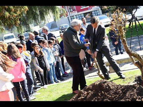Poesia e Árvores aclamadas em Famalicão