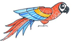 Как нарисовать и раскрасить птицу попугая. Разноцветная тропическая птица. Рисунок фломастером.