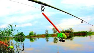 Закинул КОРМАК и НАЧАЛОСЬ Рыбалка на РЕКЕ