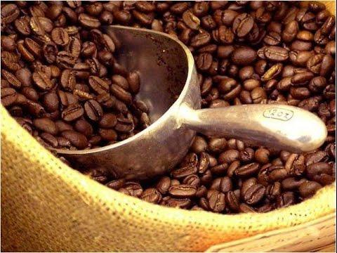 Cadena de Producción del Café - TvAgro por Juan Gonzalo Angel