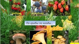 видео Букет из фруктов