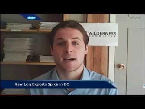 2015 02 06 TV News Story - BC raw log exports reach record highs