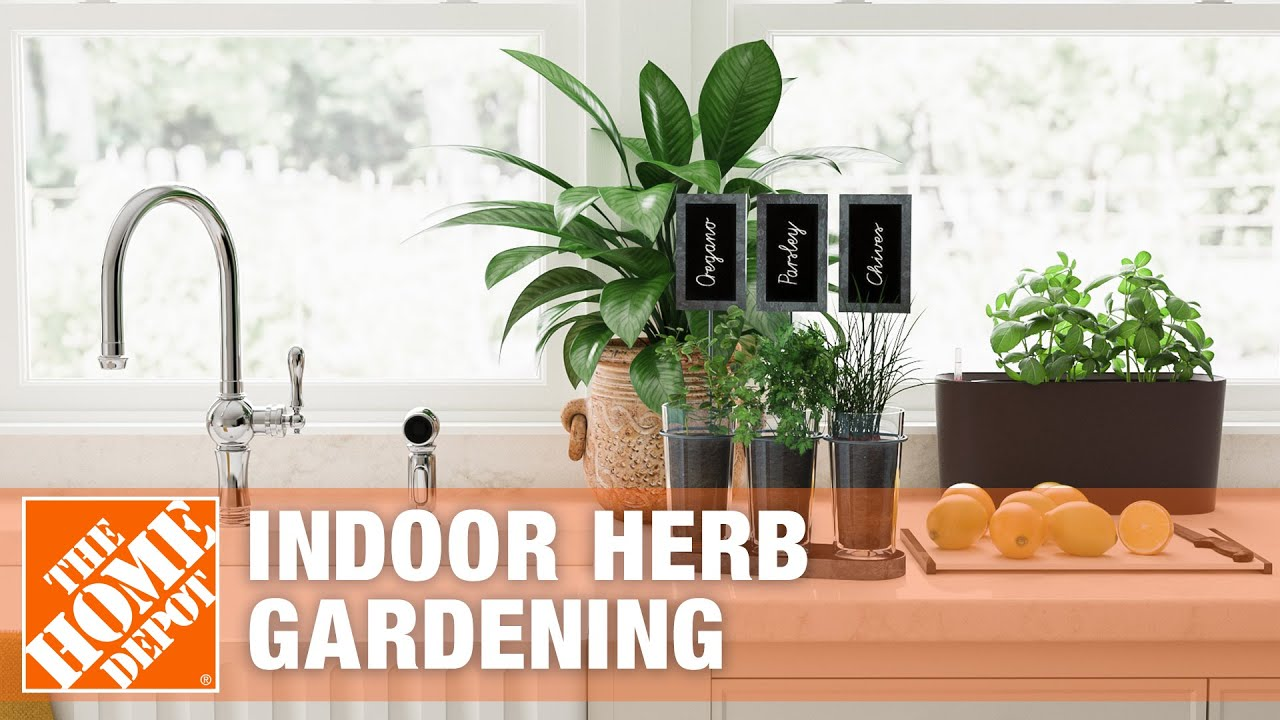endearing in home herb garden. Indoor Herb Gardens  Tips and Tricks YouTube